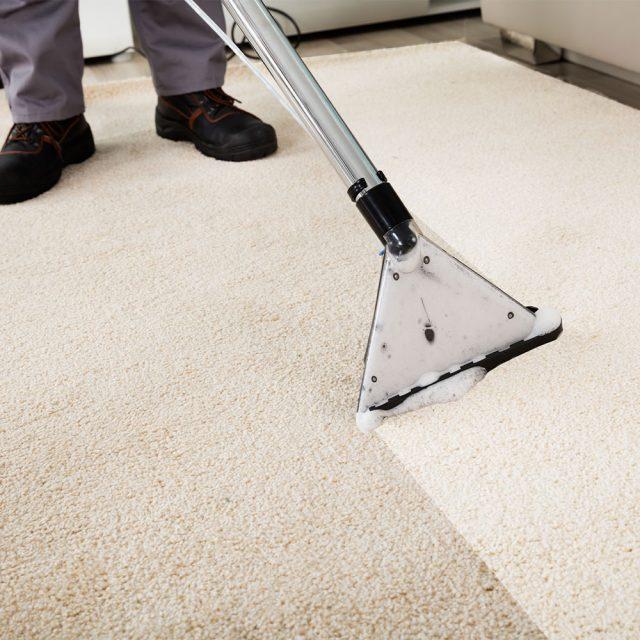 Kako očistiti tepih?